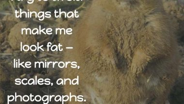 Avoid Things That Make You Fat