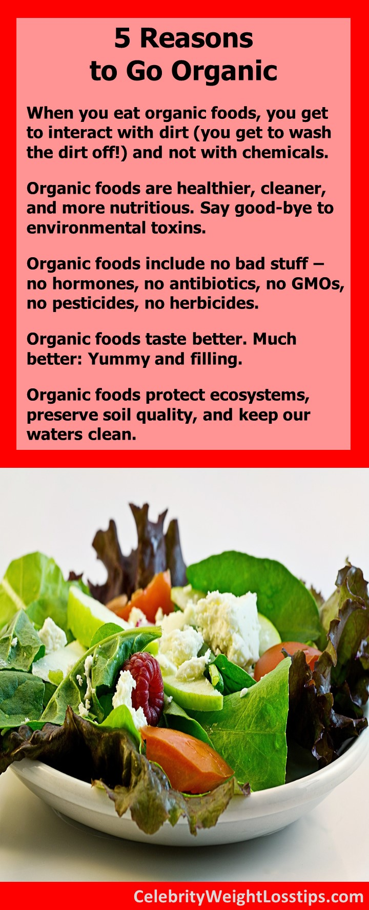5 Reasons to Go Organic