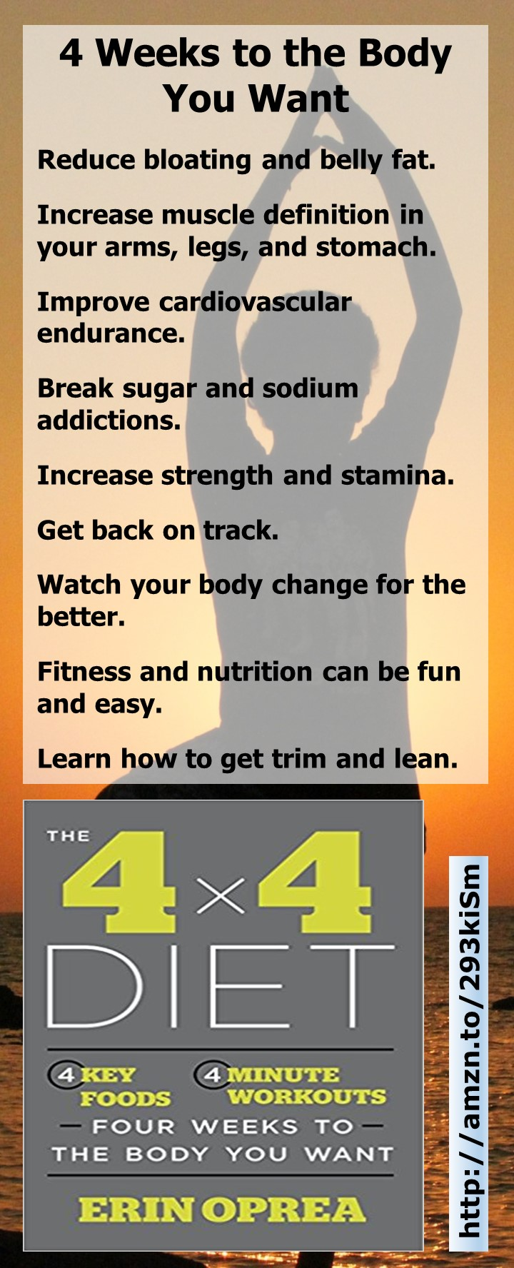 The 4x4 Diet by Erin Oprea: Discover how to reduce bloating, reduce belly fat, increase muscle definition, break sugar addiction, increase strength, and get back on track.