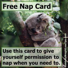 Free Nap Card Koala