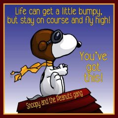 Snoopy Flies High